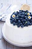 柠檬蓝莓蛋糕 库存照片