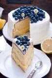 柠檬蓝莓蛋糕 图库摄影