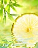 柠檬被反射的水 图库摄影