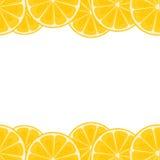 柠檬边界 免版税库存图片