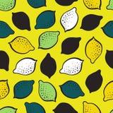 柠檬酸无缝的传染媒介样式 免版税库存照片