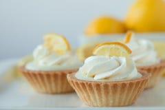 柠檬馅饼 免版税库存照片