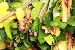 柠檬香茅,高良姜,非洲黑人石灰为汤离开。 免版税图库摄影