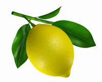 柠檬黄色 库存图片