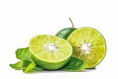 柠檬,切成两半和被投入白色背景的两个切片 免版税库存照片
