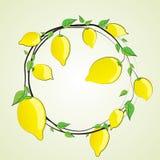 柠檬,手拉 传染媒介剪影 免版税库存图片