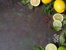 柠檬,石灰,月桂树,在黑暗的背景的香料框架  免版税图库摄影