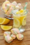 柠檬水和甜点 库存照片