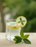 柠檬水或柠檬南瓜当熄灭您的thirs的夏天饮料 库存照片