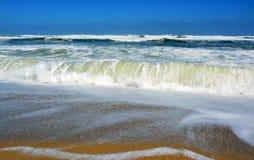 柠檬绿挥动在Scotts海滩新西兰 免版税库存图片