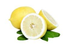 柠檬 杏子背景果子离开白色 库存照片