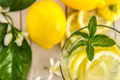 柠檬水用用一棵开花的树装饰的薄菏 免版税库存图片