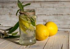 柠檬水用用一棵开花的树装饰的薄菏 免版税库存照片