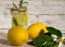 柠檬水用用一棵开花的树装饰的薄菏 库存照片