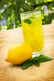 柠檬水用薄菏和柠檬 库存照片