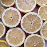 柠檬水的商标 免版税图库摄影