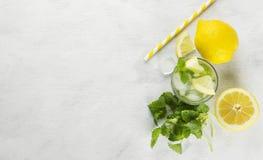 柠檬水的成份:柠檬,薄菏,冰 免版税库存图片