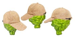 柠檬绿盖帽 免版税库存图片