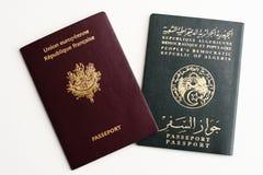 查出的二本护照 免版税库存照片