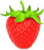 查出的大一个在草莓白色 免版税库存照片