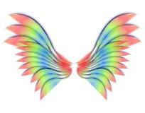 查出的天使或鸟翼 免版税库存照片