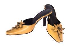 查出的夫人鞋子棕褐色 免版税图库摄影