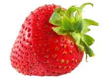 查出的宏观草莓 免版税库存图片