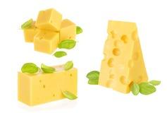 查出的干酪部分 库存照片