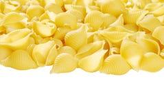 查出的意大利面食壳 免版税图库摄影