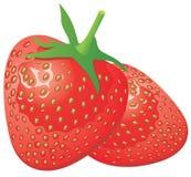 查出的成熟草莓白色 皇族释放例证