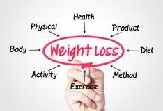 查出的损失评定躯干重量白人妇女 免版税库存图片