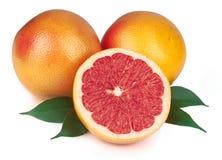 查出的新鲜的葡萄柚 库存图片
