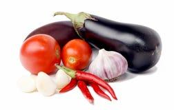 查出的新鲜蔬菜 库存照片