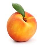 查出的桃子 图库摄影