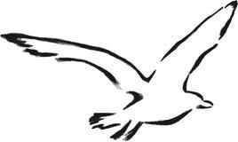 查出的概述海鸥 免版税图库摄影