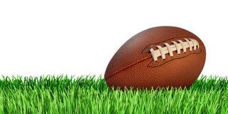 查出的橄榄球和草 库存照片