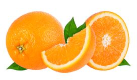 查出的橙色成熟白色 库存照片