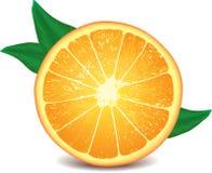 查出的橙色照片可实现的白色 库存图片