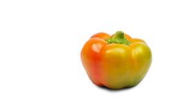 查出的橙色胡椒白色 免版税库存图片