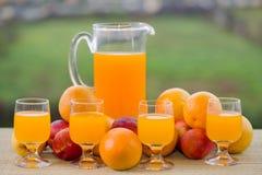 查出的汁液橙色白色 免版税库存照片
