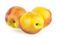 查出的油桃白色 库存照片