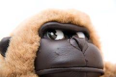 查出的猴子玩具白色 免版税库存图片