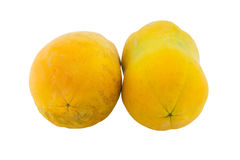 查出的番木瓜成熟白色 免版税图库摄影