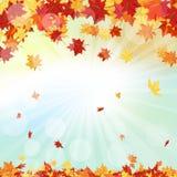 查出的秋天美好的框架离开实际白色 免版税库存图片