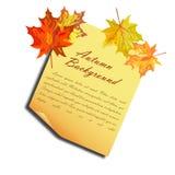 查出的秋天美好的框架离开实际白色 免版税图库摄影