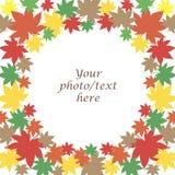 查出的秋天背景装饰框架离开注册白色 免版税库存照片