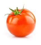 查出的红色蕃茄菜白色 免版税图库摄影