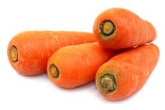 查出的红萝卜新鲜 免版税图库摄影
