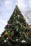 查出的背景圣诞节戏弄结构树白色 图库摄影