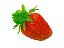 查出的草莓 免版税库存图片